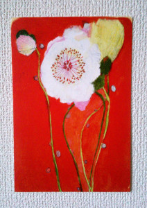 postcard_popi--