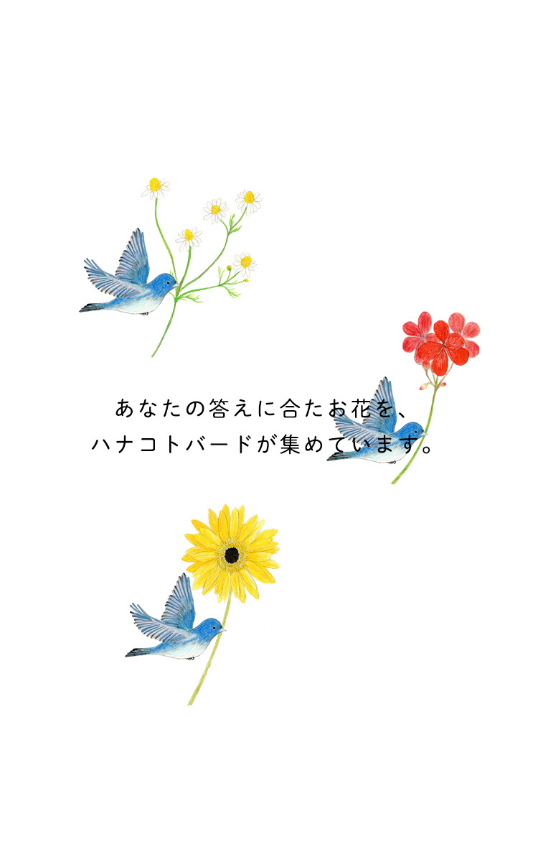 bird_fly