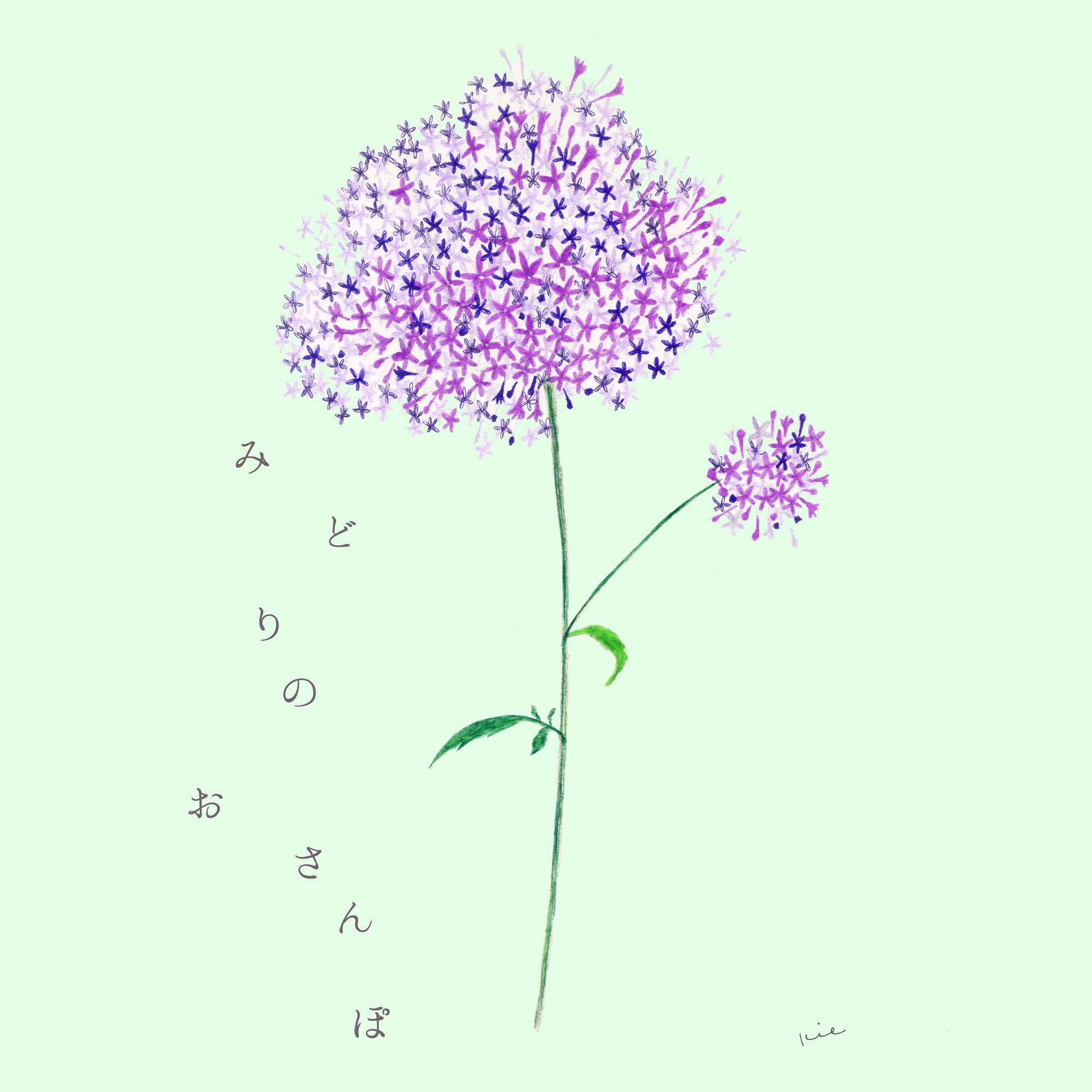 みどりのおさんぽ_m__hp