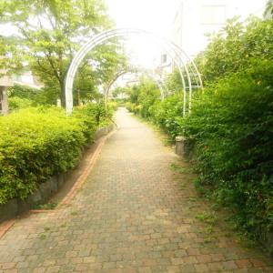 150803_ryokudou