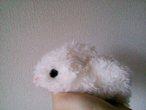 151121_usagiokiru