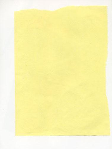 160311_yellow_