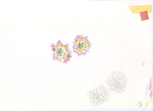 hp_flower○○