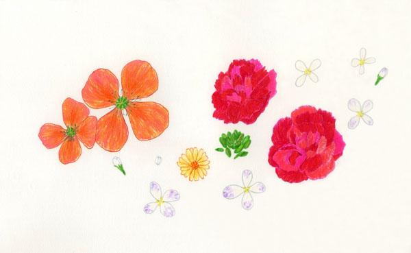 17spring_flowers